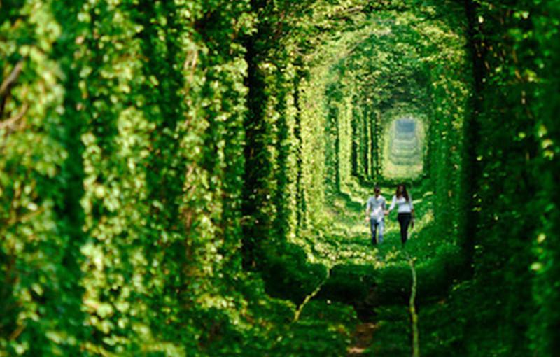 美しいトンネル